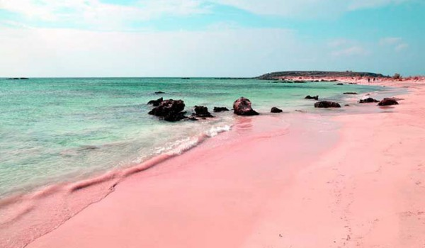 bahamas-Totto