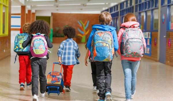 mochila para cada curso